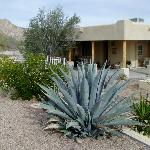 Foto de Coyote Trail Bed & Breakfast