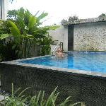 One of the pools in Taman Agung Hotel
