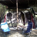 Campamento YAAX'CHE