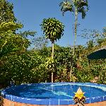 Foto de Malee's Nature Lovers Bungalows