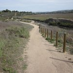‪Upper Newport Bay Nature Preserve‬