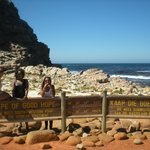 Cape Discovery Private Day Tours