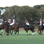Barbados Polo Club