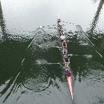 Rowers on the lake 1
