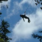  Fly high at the Tree circuit - so much fun!