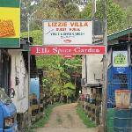 Lizzie Villa's Main road entrance (enter nature for 200 meters)