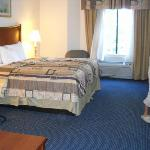 Photo de Holiday Inn Express Hotel & Suites Suffolk