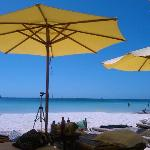 Attractive beach umbrellas to shield guests from the sun