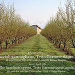 Agriturismo Tetto Garrone