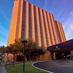 Hilton Arlington