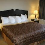 Φωτογραφία: AmericInn Lodge & Suites Green Bay East