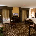 Bilde fra Hampton Inn and Suites Pine Bluff