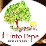 il finto pepe bed and breakfast