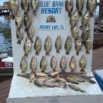 second day of crappie fishing
