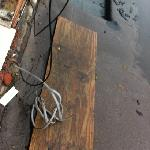 electrical cable outside