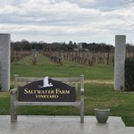 Saltwater Farm Vineyard