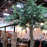 Large fake trees help emphasize the size of the place but keep it warm and cozy