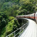 Kuranda, Coach, and Skyrail Tour