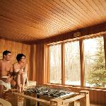  Sauna finlandais