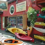 Guided Kayaking Tour of Vancouver