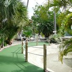 Cayman Crazy Golfing