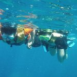 Baracuda Diving - Day Tours