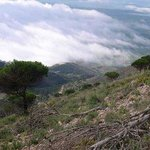 Picos de Mijas