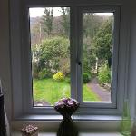 view from window of rose room