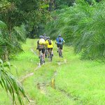 Thai Cycle Day Trips