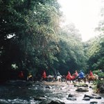 Nauyaca Waterfalls - Horseback Tours