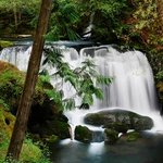 Whatcom Falls Park