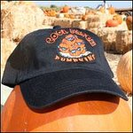 Cool Patch Pumpkins