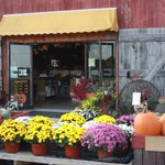 Country Barn Farm Market