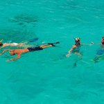 Palm Pleasure Sailing & Snorkeling Day Tours