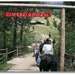 ‪Diamond J Ranch‬