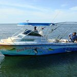 ‪Early Bird Fishing Private Charters‬