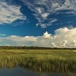 Big Talbot Island State Park
