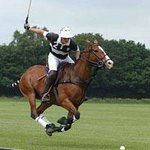 J F Polo Academy