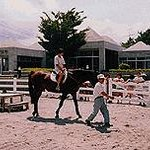 Kirishima Plaeau Riding Club