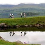 ‪Killarney Golf & Fishing Club‬