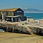 Lyme Regis Marine Aquarium