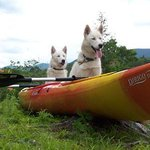 Dog sledding and Kayaking are two of the things we do,