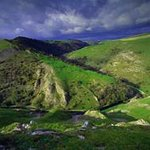 Dovedale Ravine
