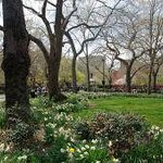Tompkins Square Park