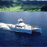 Ocean Joy Cruises