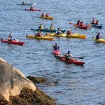 Sea Sun Kayak - Day Tours