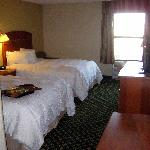 Hampton Inn Minneapolis/Burnsvilleの写真