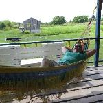  VERY comfortable hammock to relax in