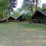 Nameri Eco Camp Foto