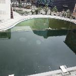 I do not know if this belongs to the hotel, but if so the pool boy needs to be sacked
